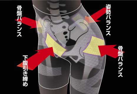 骨盤と姿勢を引き締め