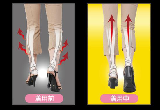 美脚革命の特徴