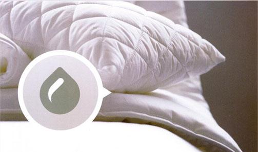 ソロテックス安眠枕