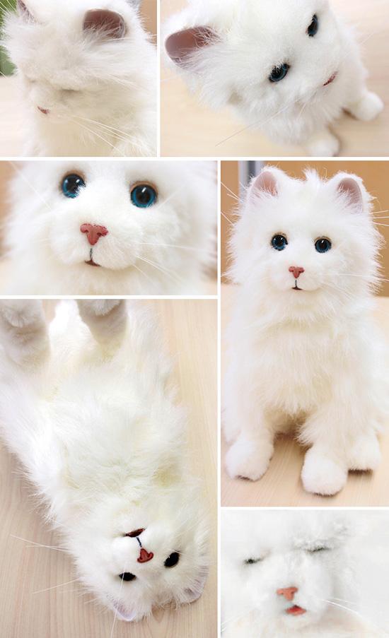 夢猫プレミアム