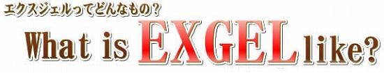 エクスジェル【EXGEL】とは?
