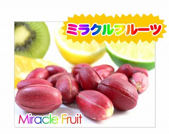 Miracle Fruit【ミラクルフルーツ】