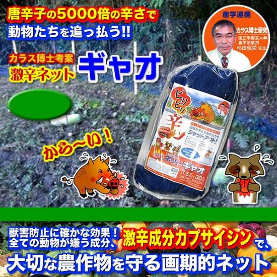 激辛ネットギャオ【カラス博士】
