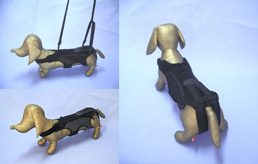 犬用腰サポーター
