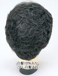 白髪混10%