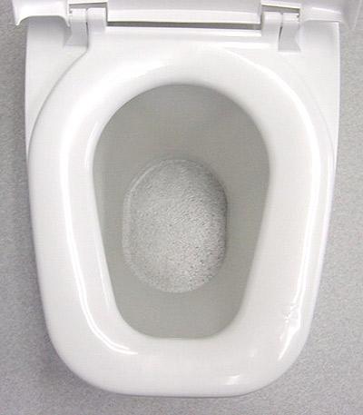 リフォームトイレ 和風式 真上写真1