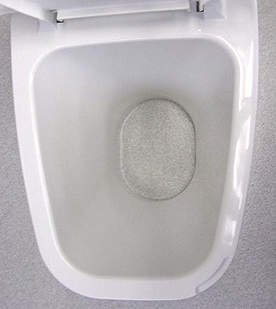 リフォームトイレ 和風式 真上写真2