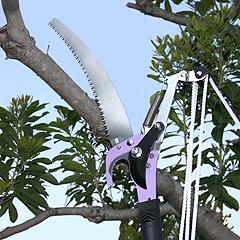 5メートルの高さまで届く高枝切りハサミ