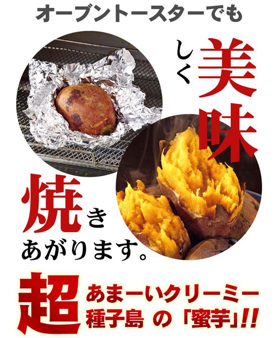 種子島蜜芋