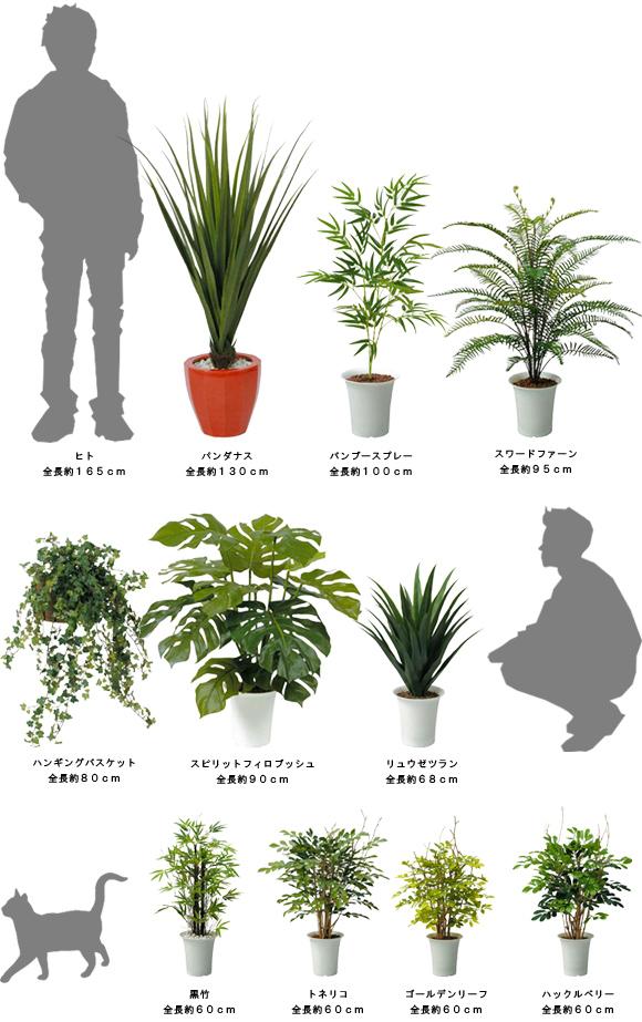 人工植物シリーズのスケール一覧